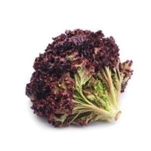 lettuce red1